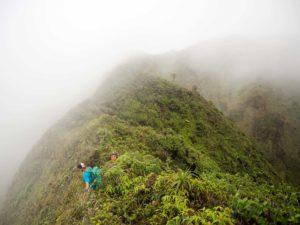 Koolau Summit Trail