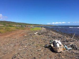 Marine debris clean up efforts in Hawaii